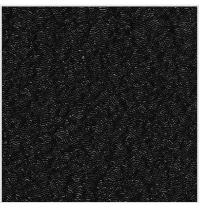 500ml Lack mit wurmförmigem Effekt